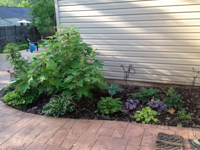 "The ""after"" look includes plantings of hosta, heuchera, astilbe and ferns."