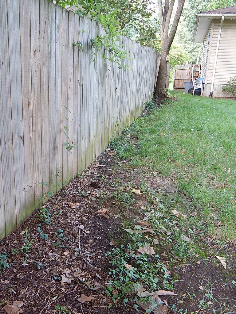 """The """"before"""" glamour shot of the South Bed. At the bottom edge of the photo is where water pools after hard rains."""
