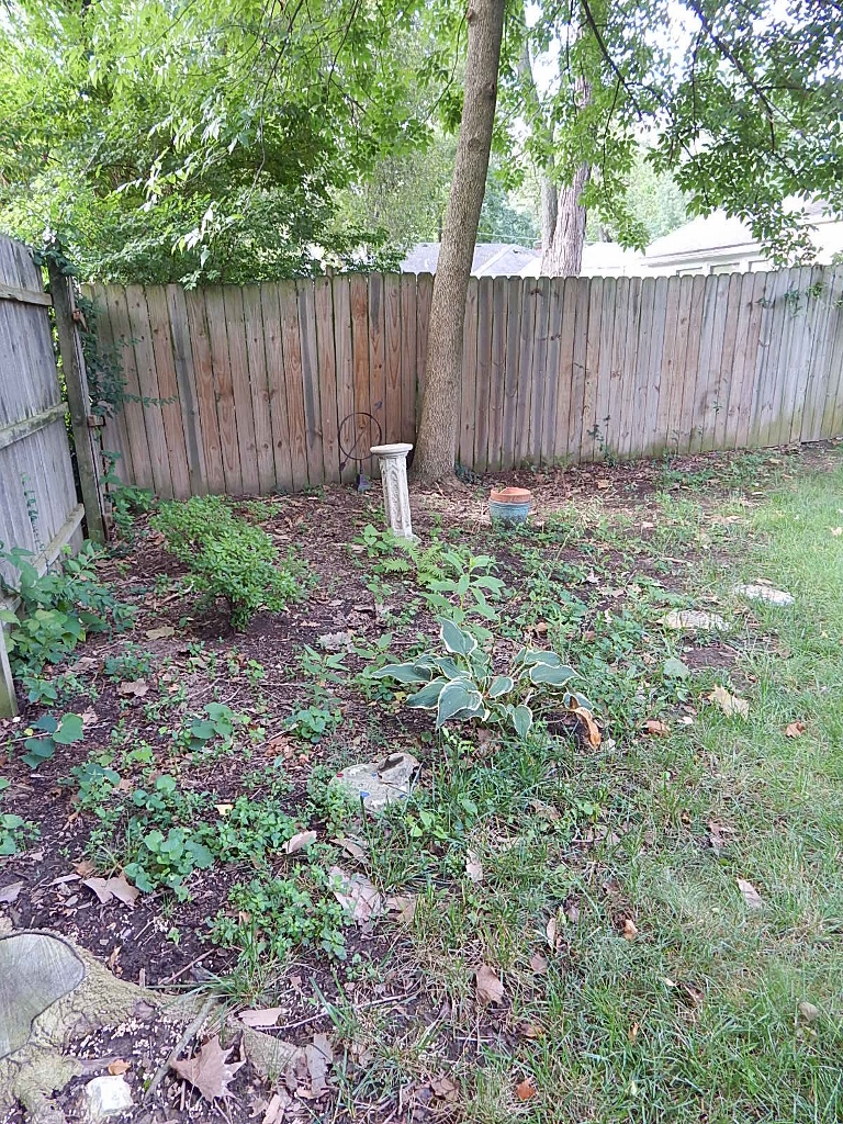 Oh so weedy, oh so neglected! I gave up the fight in the summer of 2014 only to resume the battle to make something of this difficult space.