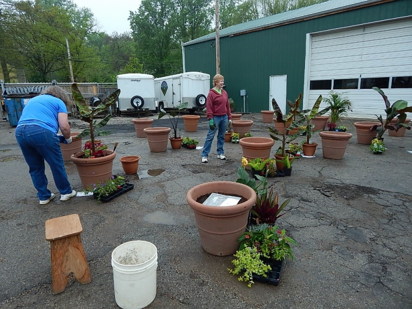 The container staging area at Glendale Public Works was filled with containers, flats of various plants and lots of local volunteers including our State District Representative  Deb Lavender.