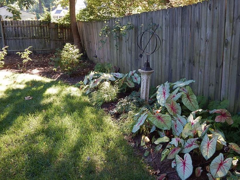 September south garden