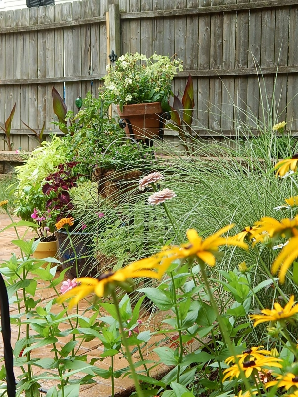 patio containers by perennial bed