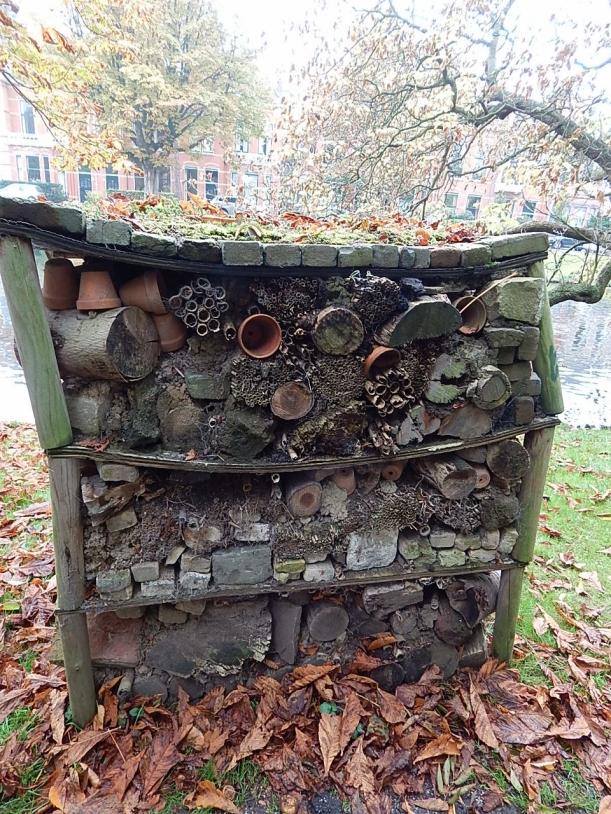 Bee habitat (960x1280)