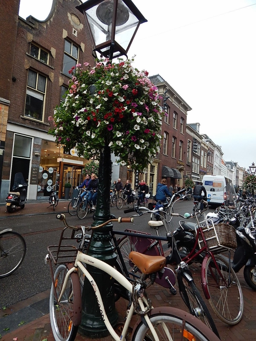flowers and bikes (960x1280)