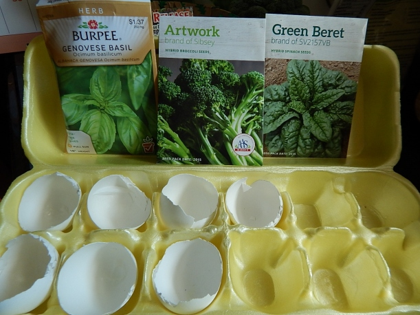 Egg carton garden 3 (1280x960)