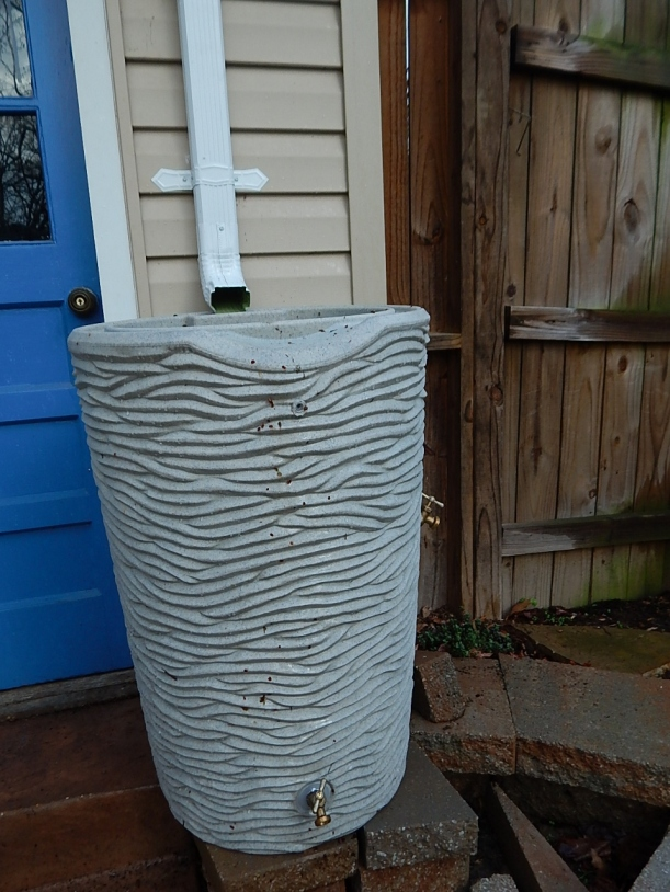Rain barrel installed (960x1280)